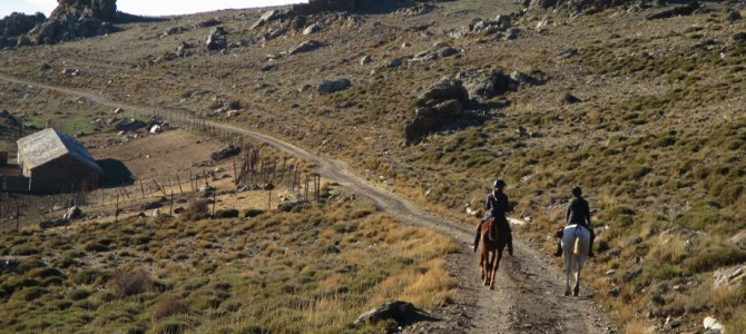 Riding Sierra Nevada: full horse trek day