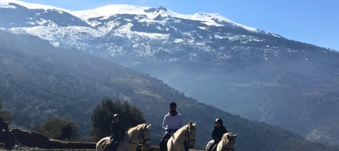 The whole family. Horse riding in Sierra Nevada