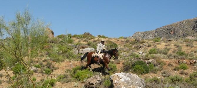 Horse Riding in Sierra Nevada