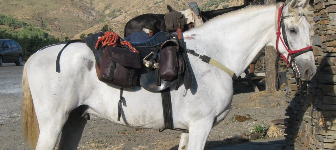 Weight limits: Sierra Nevada Horse Riding