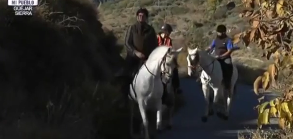 Sierra Nevada Horse Riding. Video Content.