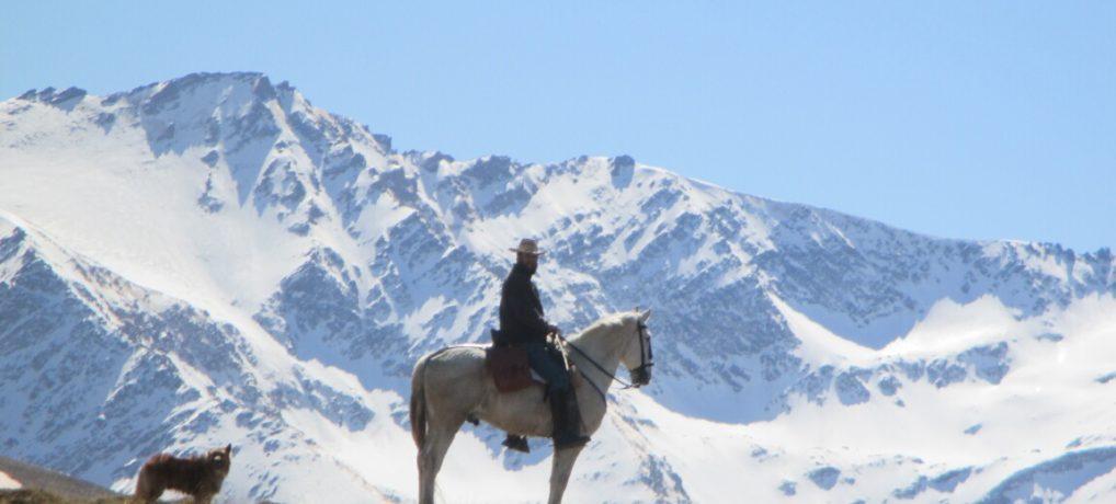 Horse Riding Sierra Nevada: Safety vs Money